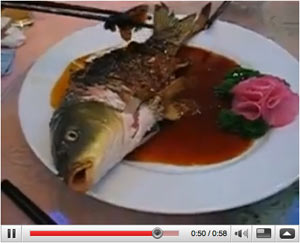 Chinese specialty, half-fried fish