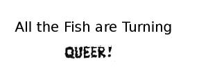 queerfish